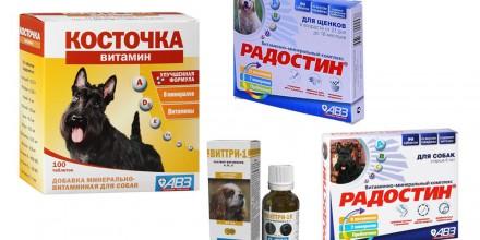 Витамины Агроветзащита (АВЗ) для собак