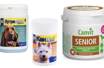 Витамины Канвит для собак (Canvit)
