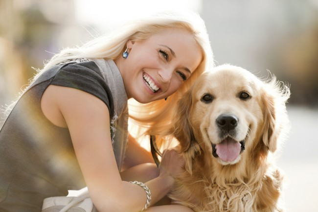 выбор между взрослой собакой и щенком