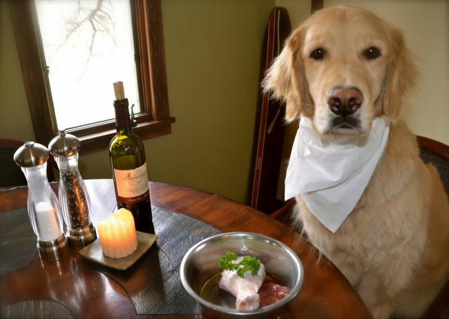 чем кормить собаку при сахарном диабете