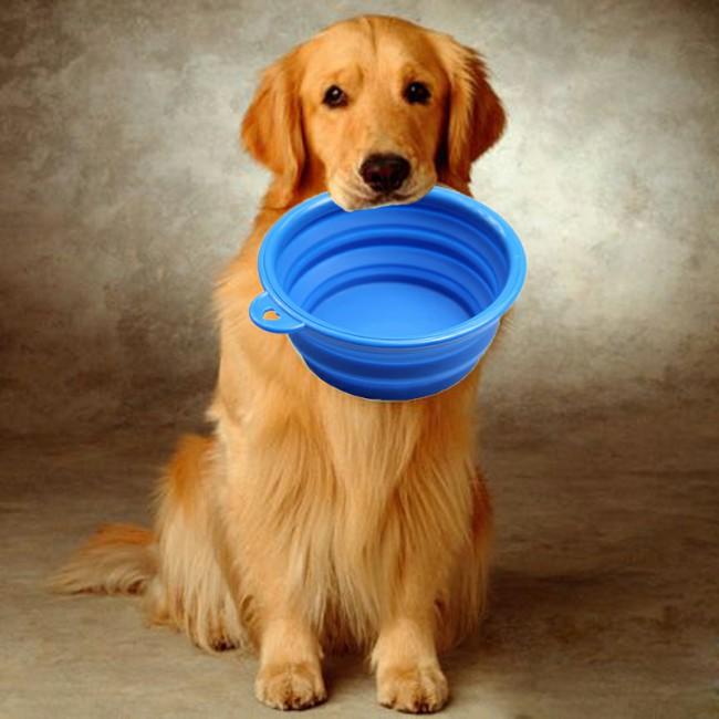 чем кормить собаку на натуралке