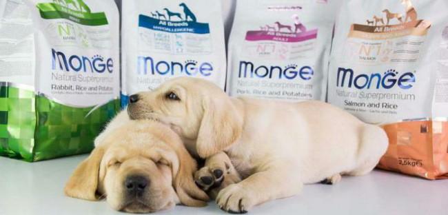 Корм для собак Монж (Monge) отзывы и состав