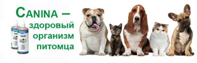 витамины Канина для собак